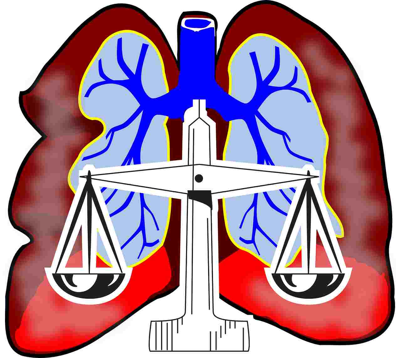 Balanced Correct Breathing Lungs