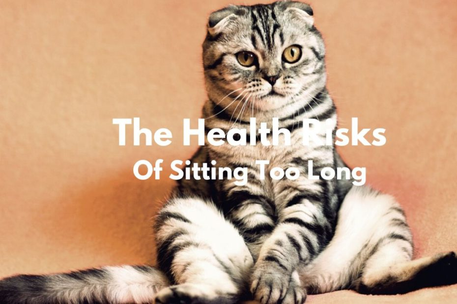 Health Risks Of Sitting Too Long Featured Image
